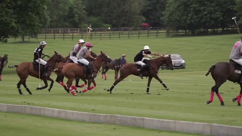 two teams play together in Polo