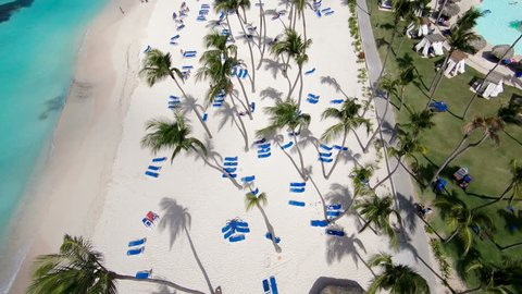 Beach, beautiful beach, blue sea, Dominican republic, palm trees, white sand / Punta Cana. Beautiful palm trees on the shore of the blue sea. Atlantic Ocean, beaches. Bavaro beach.