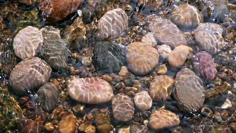 Sunlit Pebbles in a Stream.  Pebbles in a shallow stream dappled by sunlight caused by ripples. Shot in slow motion.