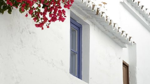 Typical andalusian window of a whitewashed house with red flowers in the wall