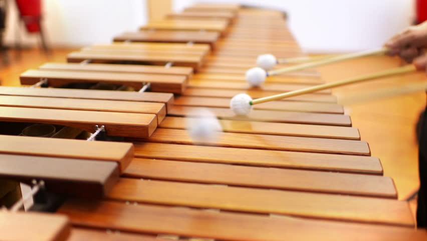 Kid studying percussion instrument marimbaphone