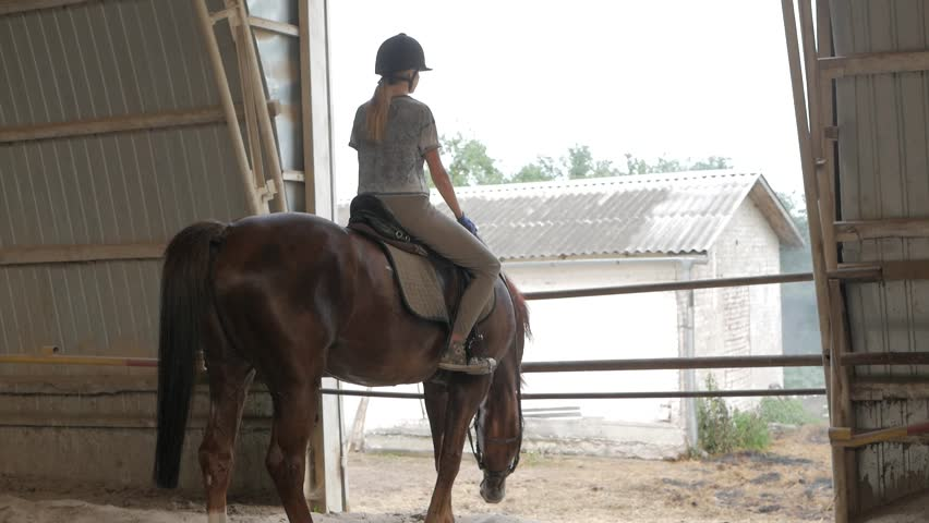 bloopers. funny a case with a horse. the girl sits on a horse and the horse lifting her head hits the crossbar