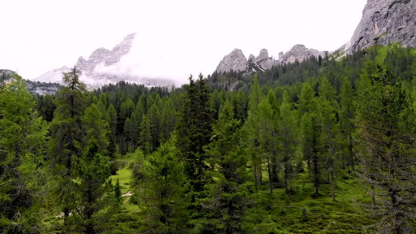 Aerial Drone Footage: Leaning over the mountain forest in Dolomites Italy. Green forest with the big rocky mountains in the background. Cortina D'Ampezo region in Italian Dolomites.