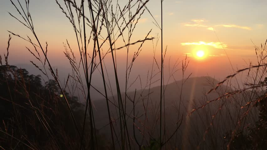 Sunset on the mountain and grass in the shadow. Viewpoint to see twilight time in the evening. Travel for trekking in forest on holiday.