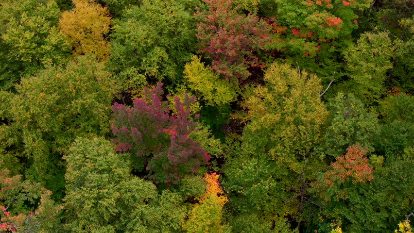 An Aerial View Of The Changing Season In The White Mountains Of New Hampshire