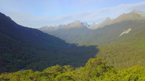 Aerial New Zealand Native Forest South Island Fiordland National Park