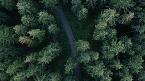 "This droneshot was taken on a three day trip to ""Harz Forrest"" in Germany."