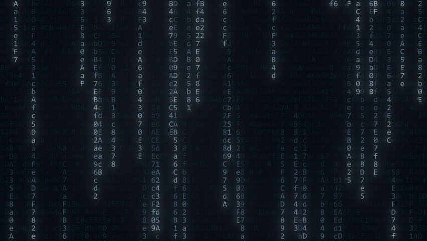 Flashing hexadecimal symbols. Computer related loopable motion background | Shutterstock HD Video #1014900628