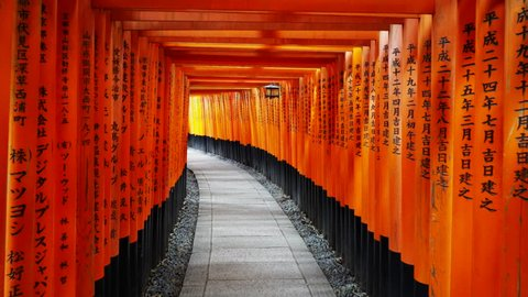 KYOTO, JAPAN - APRIL, 16, 2018: gimbal steadicam shot walking past vermilion torii gates and a lantern at fushimi inari shrine in kyoto, japan- the text names the gate donor and date