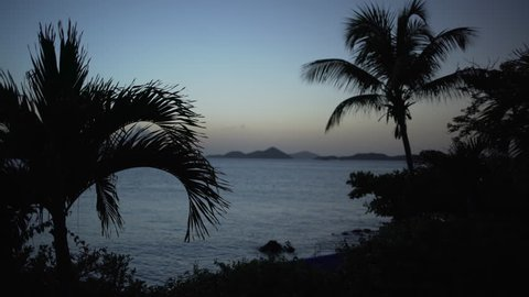 Very silhouetted tropical trees with a twilight shot of the Caribbean ocean for green screen or chroma key. Out of focus or defocused background plate.