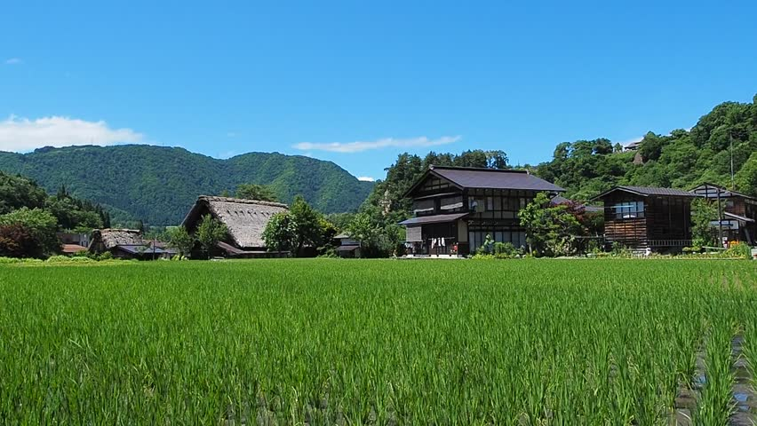 A countryside in Japan in early summer.  The historical village of Shirakawa-go.