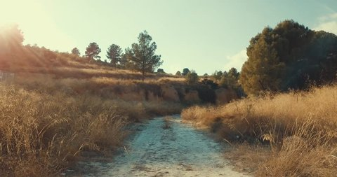 Slowly Moving Down a Dirt Path Off Road in A Grassy Forest in the Northwest Region of Murcia Spain