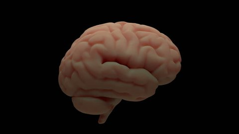 3d render of brain with damage zones. Infection or another reason of brain damage concept. Animation of growing brain damage zone. Isolated animation.