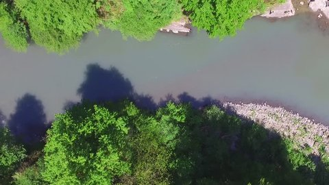 Top-down drone view of the Sochi river gorge with dense forest in sunny summer day, Russia