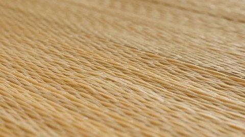 Cattail Typha rug surface 4K slow tilt video