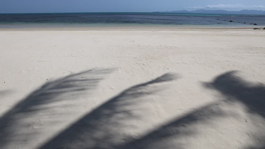 Shadow Of Coconut Leaves Moved By Sea Breeze On Tropical Island Beach