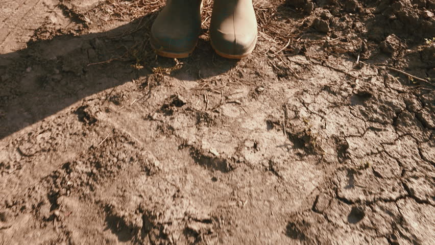 Farmer in rubber boots walking on dry soil ground, global warming and climate change is impacting crops growing and yield