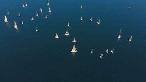 Aerial shot of sailing yachts at the race-regatta