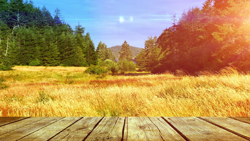 Wood Outdoor Deck Table, Yellow Grass Field, Nature Vista View, Tall Grass