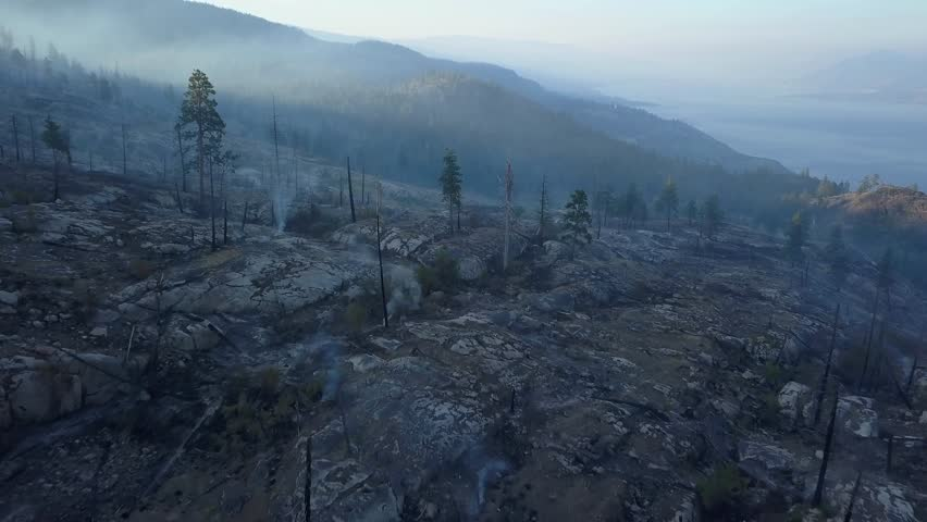 Wildfire aftermath Penticton British Columbia. Dead burned woods, fire and smoke over hills in 4k aerial drone perspective. View over forest at Okanagan lake at sunrise