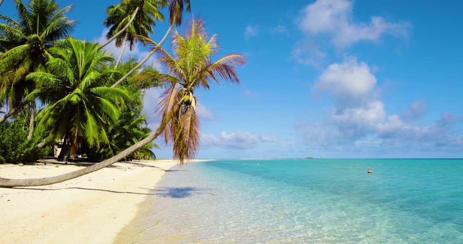 Dream beach in French Polynesia | Shutterstock HD Video #1015937818