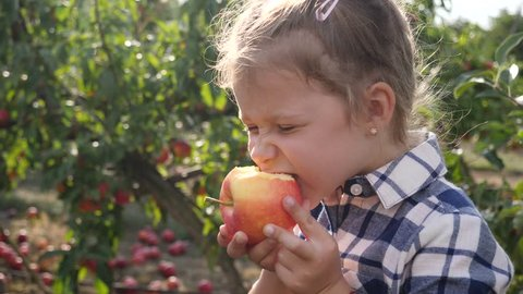 Cute child girl portrait stay in apple tree garden outdoors eating ripe juicy fruits