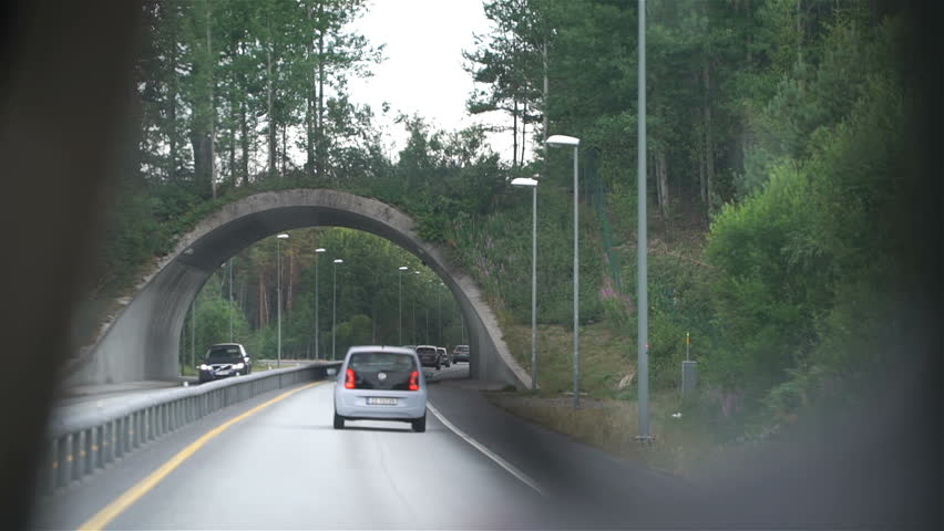 Bridge for wild animals over the highway. The car passes under the Bridge for wild animals. Slow motion #1016901238