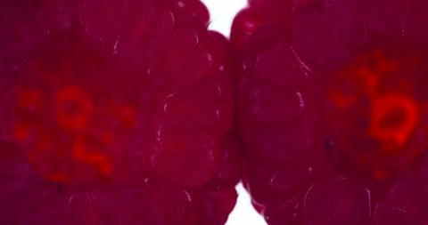 Two Synchronously Compressed Raspberry. Raspberries are compressed and crushed close-up on a bright white background, creating a juicy burst of pulp and a bright shell. Shooting at 120fps