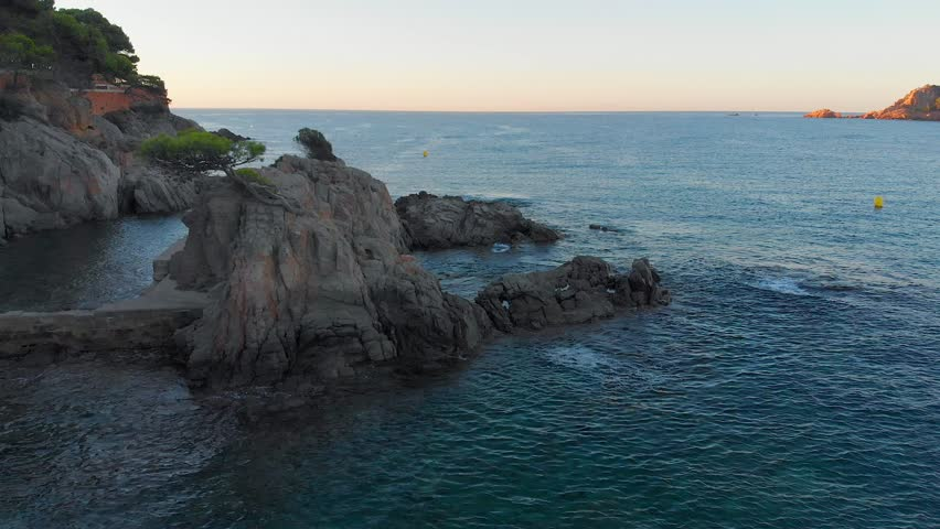 Aerial video view of a mountain with the lonely green tree surrounded with the blue sea water and stones, early morning, Catalonia, Spain, Sant Pol, Sagaro, 4K.  | Shutterstock HD Video #1017774718