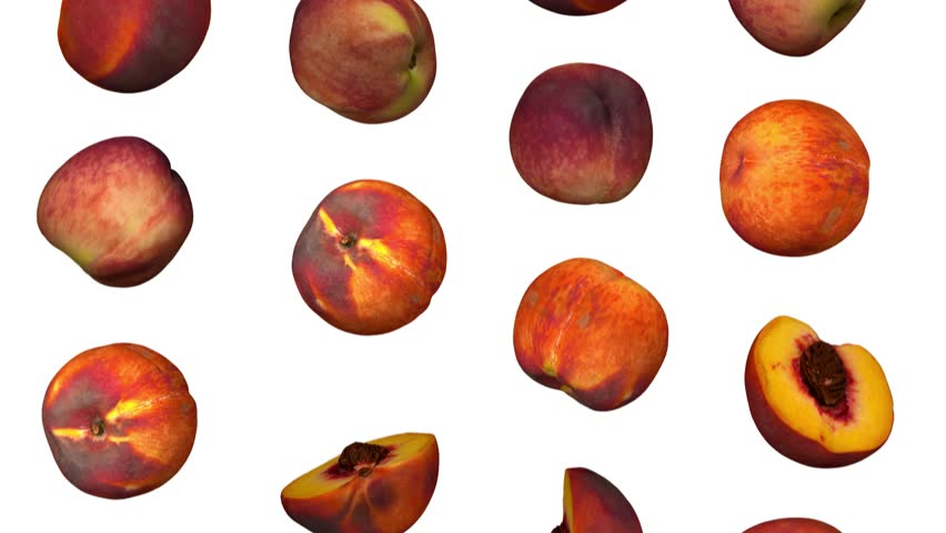 Realistic render of falling peaches on white background. The video is seamlessly looping, and the objects are 3D scanned from real peaches.  | Shutterstock HD Video #1017949228