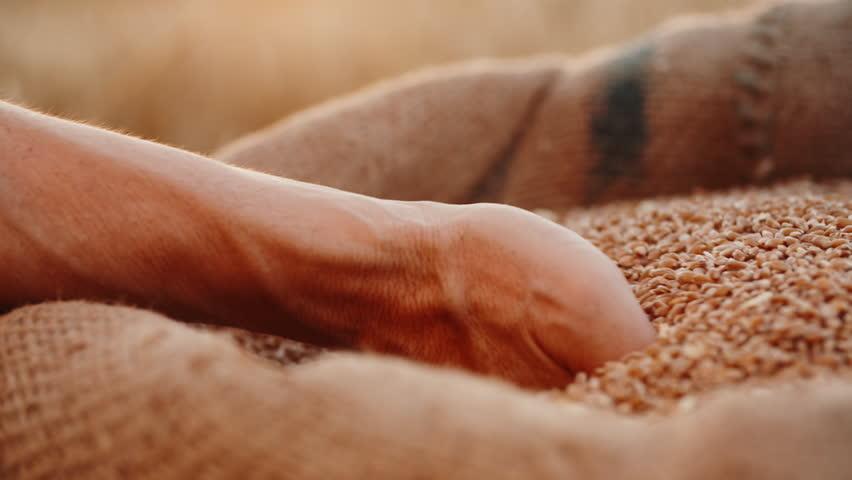 wheat sack light fixture