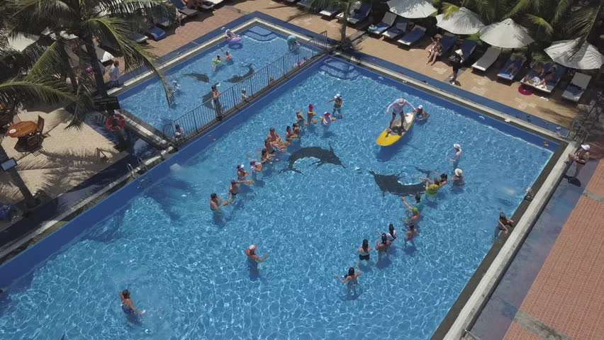 Image of: Comedy 2k Aerial View Of Group Of People Playing The Funny Swimming Pool Games In Luxurious Resort Highlyrated 2k Aerial View Of Stock Footage Video 100 Royaltyfree
