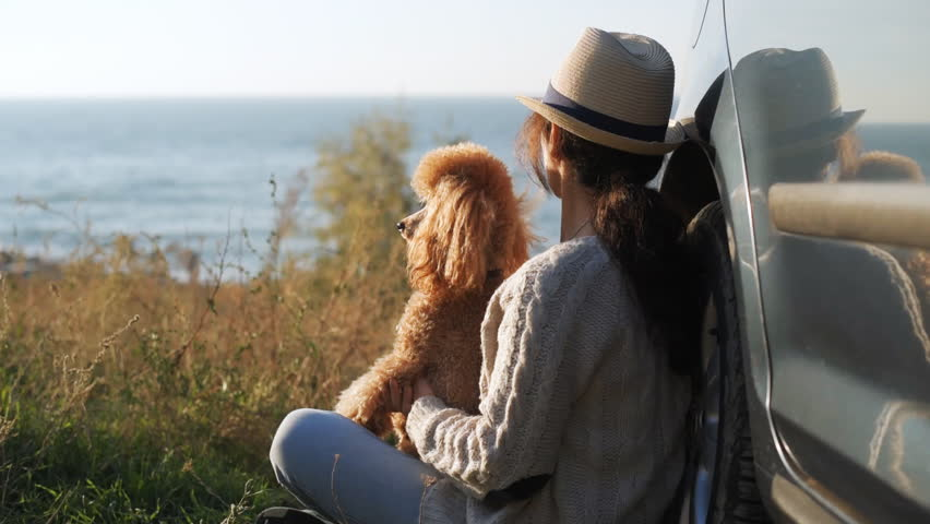 Woman traveler with dog is enjoying beautiful sunset on sea during road trip . | Shutterstock HD Video #1018178848