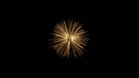 Fireworks Palm Background