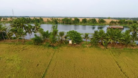 A panning aerial shot of the backwaters in Kerala India.