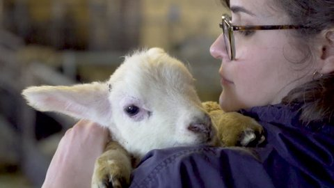 Woman holding a white lamb