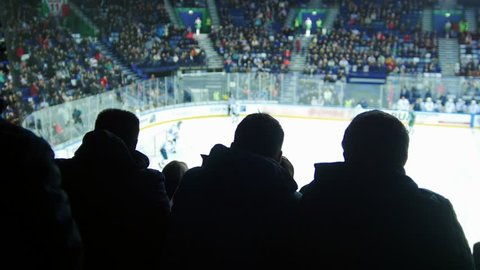 A group of young people watching hockey match