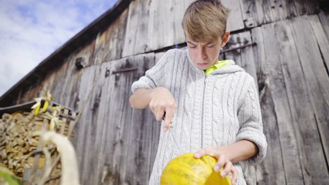 Cutting out pumpkin on wooden table HD. Young boy in front of old barn dressed in woolen sweater holding knife and stabbing a big empty pumpkin jib shot from low to high angle.