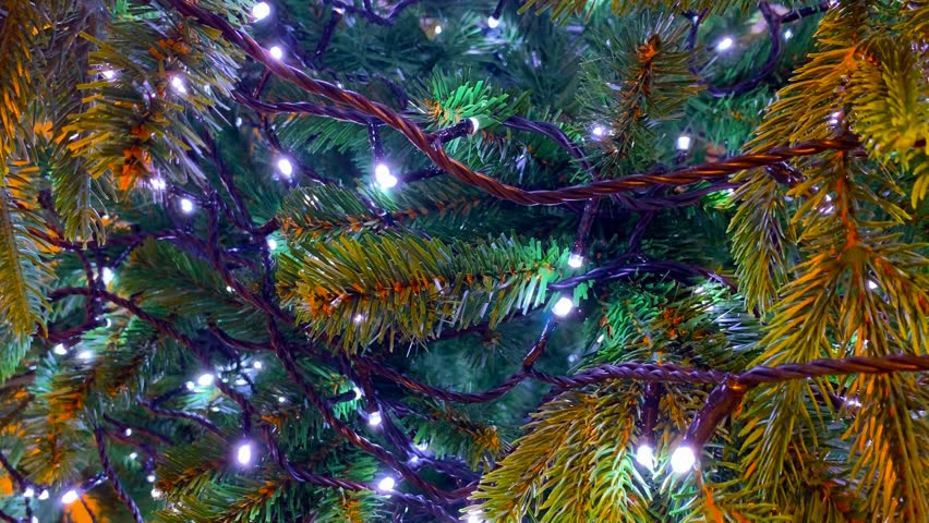 Close up of christmas tree | Shutterstock HD Video #1020702178