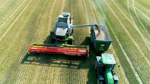 Harvesting on the wheat field Combine and Tractor Agriculture Machinery Technology Food Modification Crop Farming Concept