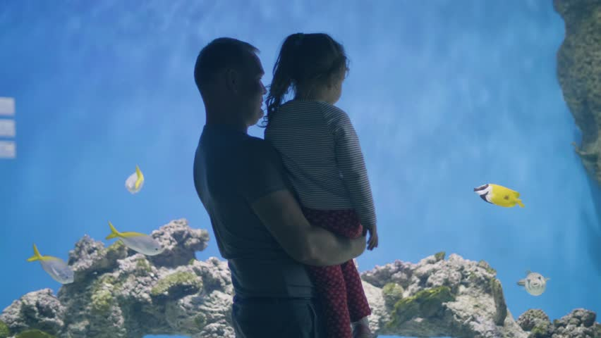 Father holding little daughter on hands and watching fish swimming in oceanarium | Shutterstock HD Video #1021145488