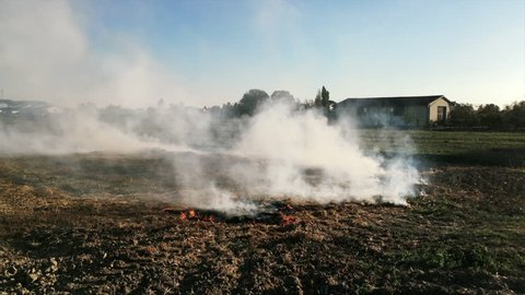 somebody believe that the dangerous activity of burning the soil is good for fertilizing it