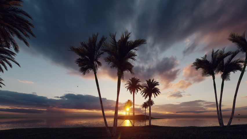His stock motion graphics clip features the stunning Palms Beach during sunset. The silhouetted beach island has many small neighboring islets, also with palm trees. The islands and the dark blue sky    Shutterstock HD Video #1021215778