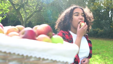 Biracial African American mixed race teenage girl young woman eating an apple by a basket of picked apples in a sunny orchard
