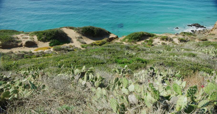 Point Dume Natural Preserve in Malibu. California | Shutterstock HD Video #1021738588