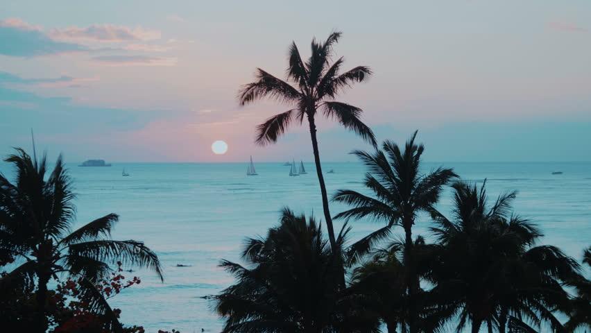 Colorful Waikiki beach in  Hawaii in 4k | Shutterstock HD Video #1022818228