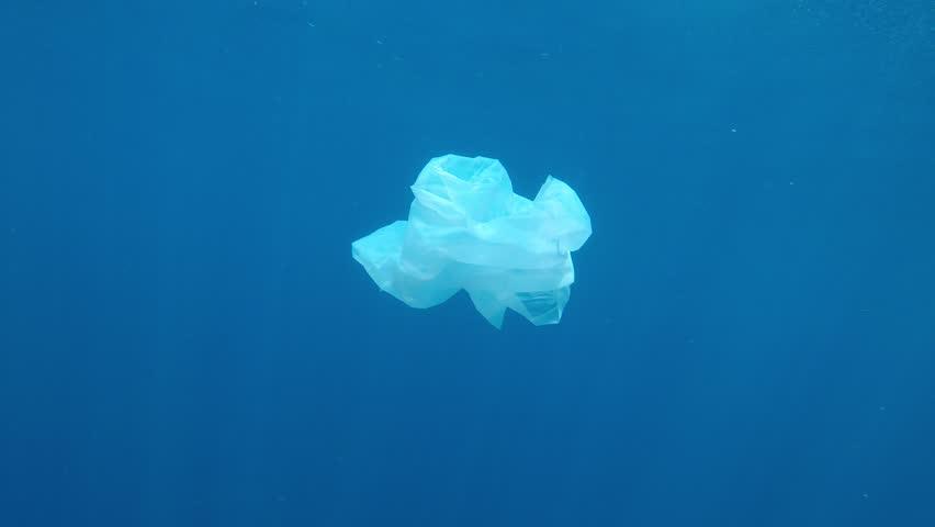 Plastic bag pollution underwater in ocean    Shutterstock HD Video #1023252028