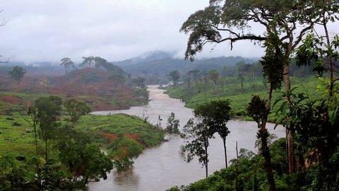 Rapid River in the tropical jungle. Equatorial Guinea. Forest, landscape, river. / River in Jungle. Equatorial Guinea. Africa.