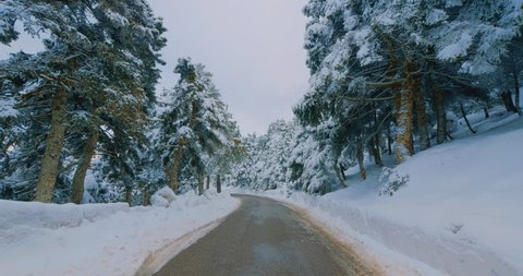 Driving on snow covered mountain forest road.Pov gimbal footage of driving on the road of a snow covered mountain forest on a winter day passing by fir trees covered in pure white snow.Original 10bit.