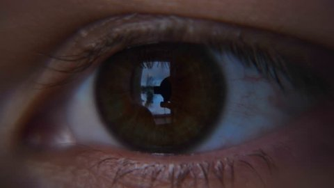 The human eye is depicted very closely with the brown (hazel) color of the movement of the eye and blink. Concept of:Brown eye, Close to the eye, Man, Woman.
